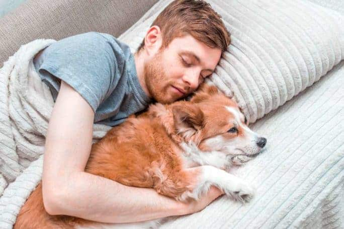 Dogs will feel much safer when they're sleeping with their humans