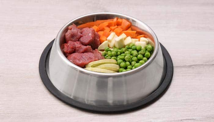 Did you know homemade dog food is great for dogs who are overweight? It's light and can help decrease total calories
