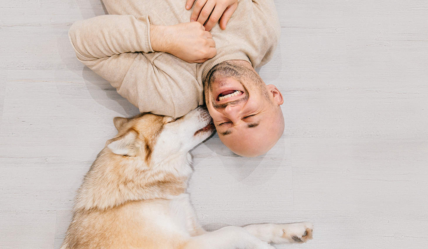 dog licking a mans ears while the man is laughing