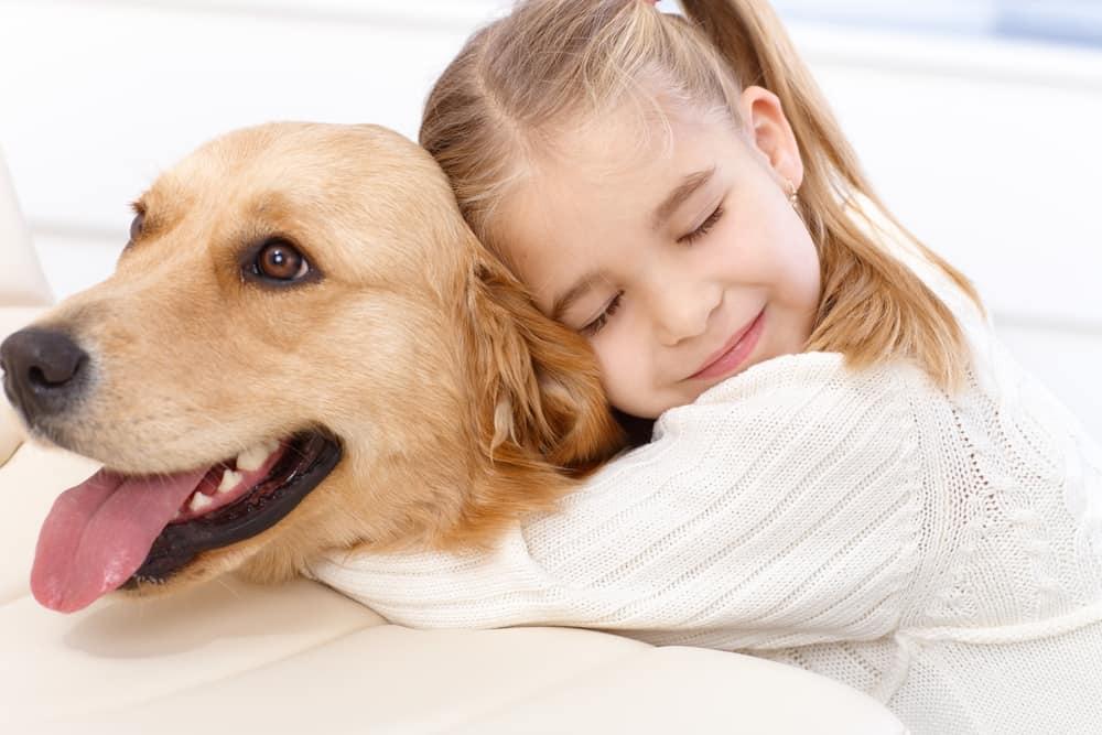dog protecting child