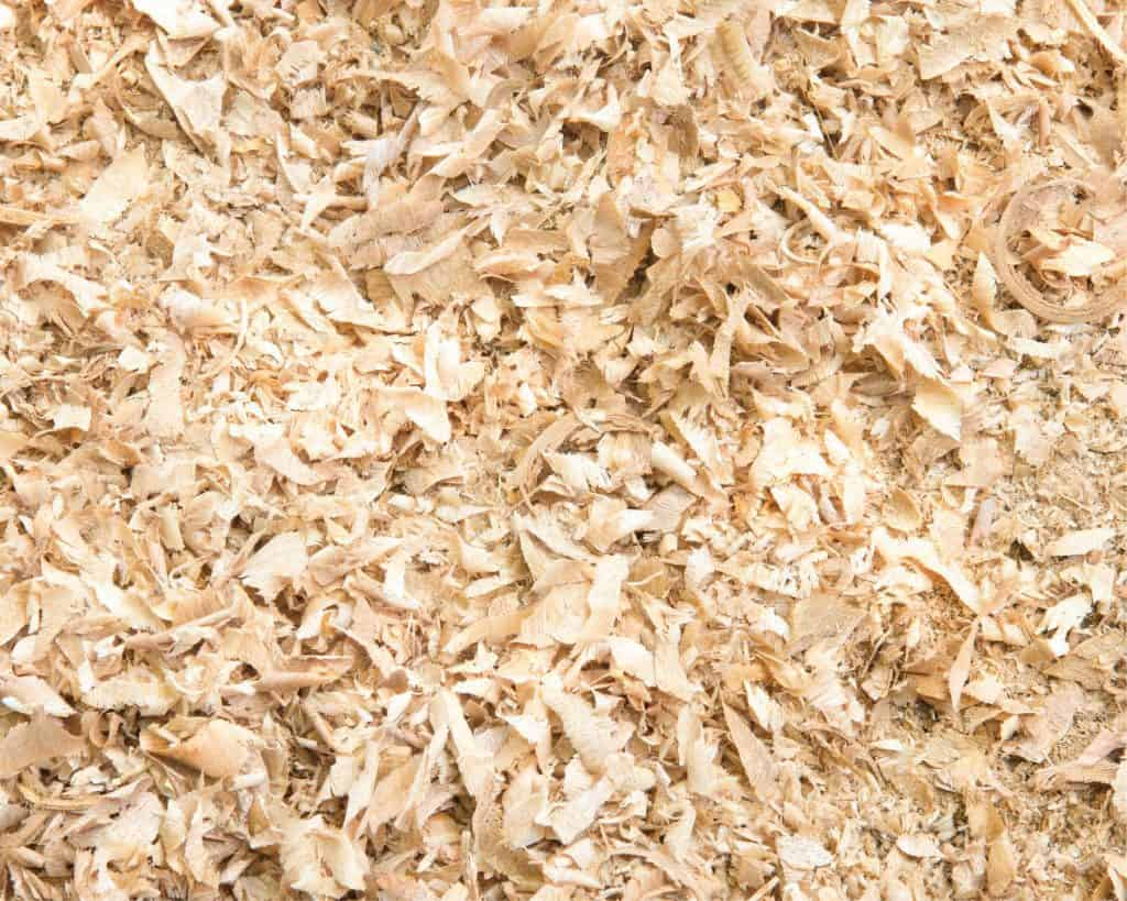 pile of pine shavings for newborn puppies