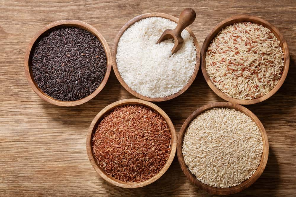 different types of rice to feed your dog